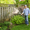 Man watering garden near tall fence