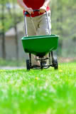 Fertilizing the lawn