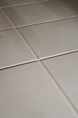 Ceramic Tile and Grout Detail