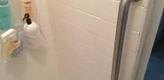 Vertical shower safety rail