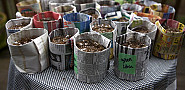 Newspaper seed pots that I made! --Sayward