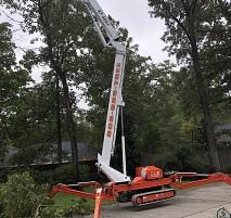 Tree Works Sumter Sc 29150 Networx