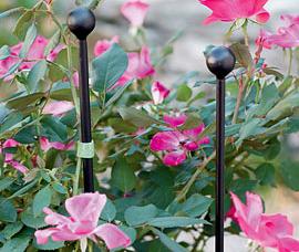 Essex Flower Stakes via Gardeners.com