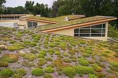 Shed Roofs Photo: Arlington VA/flickr