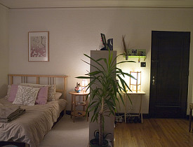 How To Create Private Bedroom Space In A Small Loft Or Studio   Networx