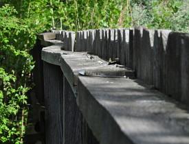 木头的结构是个坚固的铁手。安藤的右侧,直接直接留下,直接直接在地上。照片:史蒂文·凯文·史蒂文斯