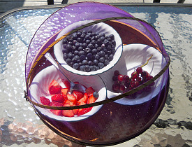A screen dome like the one pictured is a great way to protect food from pests. (Photo: Nico Paix/Flickr)