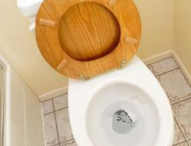 tip_woodtoiletseat2_4370b6776585691ef4d5