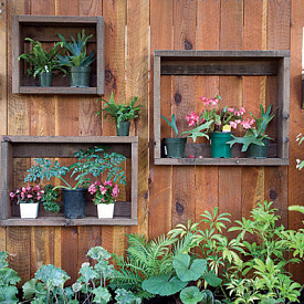 Photo: My Garden Shine/Hometalk