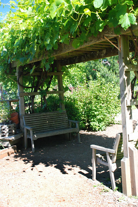 Pergola Photo: penywise/morgueFile