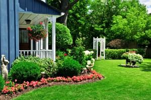 Front yard design