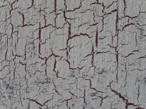 crackle paint texture