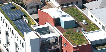 Casa Feliz's Living Roof  Photo: casafelizapartments.org