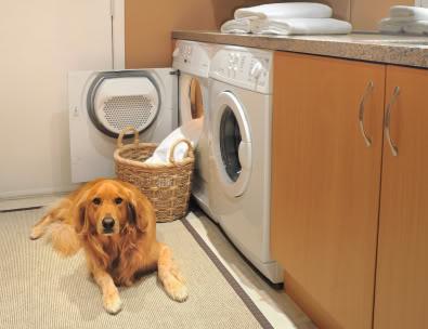 washer under counter