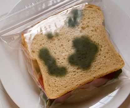 Anti-theft lunch bag/thisiswhyimbroke.com
