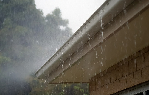 雨 中 的 Sun h ay / D V .