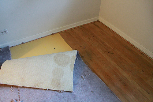 Guest Room Carpet Removal 2011-1