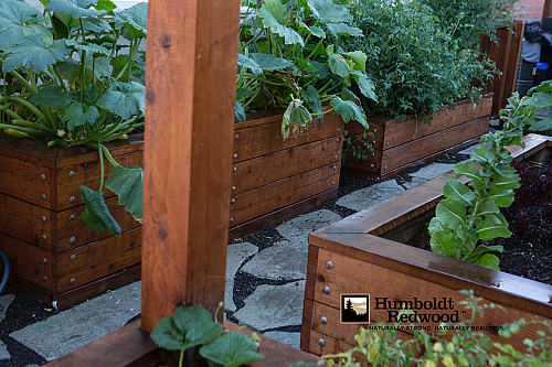 Planter Boxes/Courtesy Humboldt Redwood