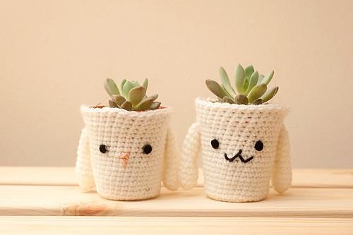 Gift houseplant  Tiny Hole / flickr