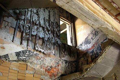 Moldy house lisaleo / Morguefile