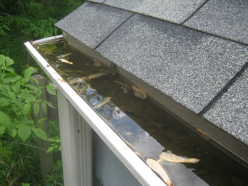 Replacing gutters and fascia networx all that water on your roof has to end up somewhere which is where your pals the gutters come in collecting and diverting rainwater ensures it wont end solutioingenieria Image collections
