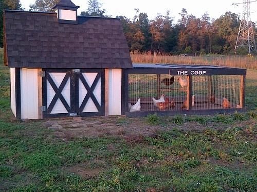 Old World Garden Farms/Hometalk.com