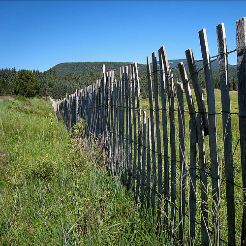 Who Pays for Fence Replacement? - Networx