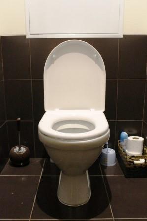 Toilet Svyatoslav / Pixabay