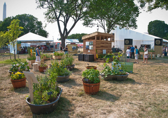 Photo of container garden by USDA.gov/Flickr.
