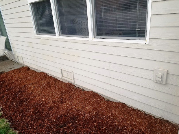 Siding replacement and painting