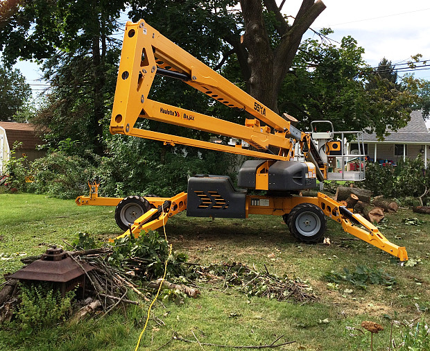 Tree service lift