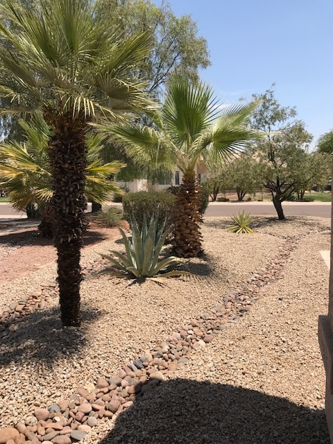 Arizona rock landscaping