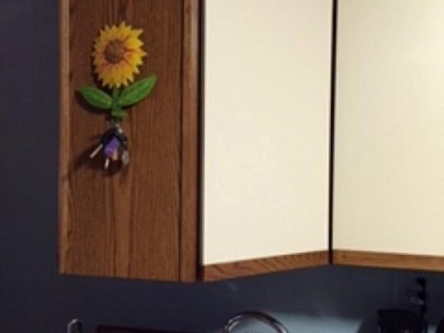 厨房厨房的橱柜里