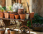 A vintage cart holds an herb garden. Photo by bloodstone/istockphoto.com.