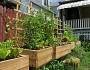 4x4 gardens in an urban Chicago backyard. Photo: roman.petruniak/flickr creative commons.