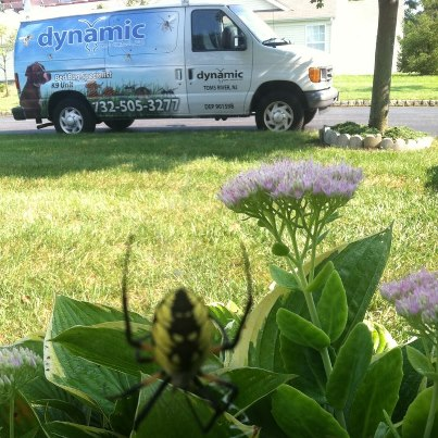 Dynamic Pest Control Llc Networx