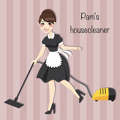 Pam S Housecleaner Networx