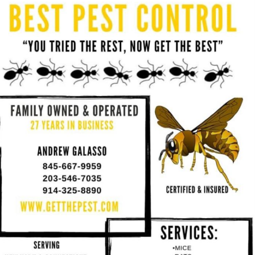 Best Pest Control Services Inc Brewster Ny 10509 Networx
