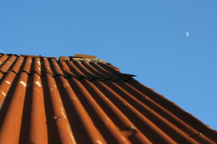 Rusty Metal Roof What To Do Networx