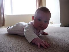 4 Reasons To Choose Carpet Networx