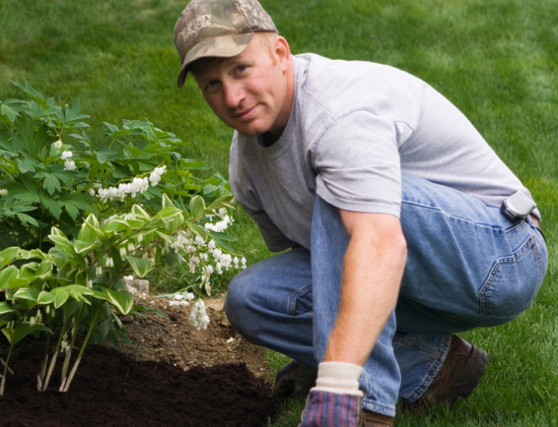 10 Questions to Ask a Gardener Before Hiring - Networx